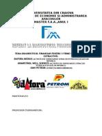Diagnostic Financiar Industria Extractvă