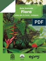 Guía Ilustrada Flora Cañón de Río Porce - Antioquia
