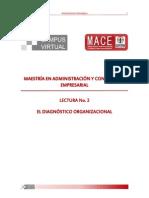 El Diagnóstico Organizacional (Mace)