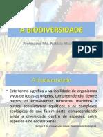AULA 1 - BIODIVERSIDADE.pdf
