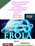 Ebola Expo