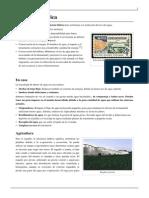 Eficiencia hídrica.pdf