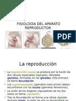 Fisiologia - Aparato Reproductor