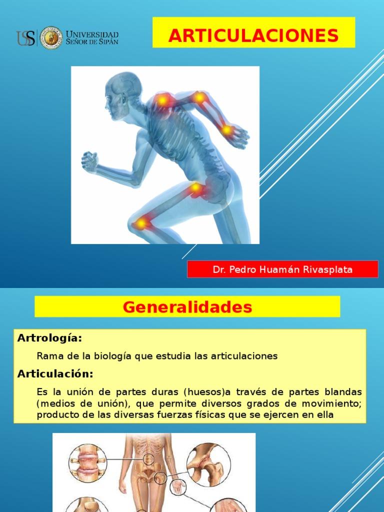 Articulaciones Anatomia