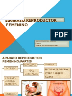 Aparato Reproductor Femenico- Carolina