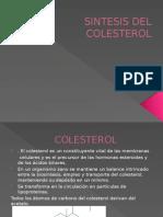 Sintesis Del Colesterol