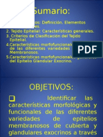 DIAPOSITIVAS DE TEJIDO EPITELIAL