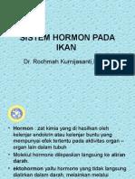 Sistem Hormon Pada Ikan
