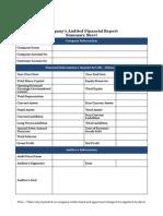 Company s Audited Financial Report Summary Sheet