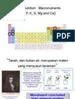 Lecture 3 Plant Nutrition