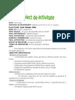 0 Proiect Didacticjoc Logico Matematic