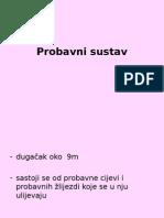 PROBAVNI_SUSTAV