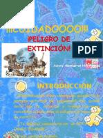 Cuidado, peligro de extinción
