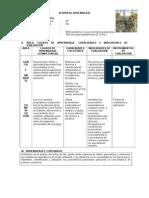 SESI_N_DE_APRENDIZAJE_ECOSISTEMA_-_PRONOMBRES_PERSONALES_2012 (2)