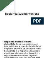 Regiunea submentoniera