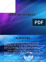 Albastru Si Violet