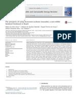 The Prospects of Using Acrocomia Aculeata (Macaúba) a Non-edible
