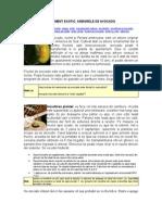 39066529-Cultivăm-avocado.pdf