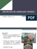 ABSORCIÓN-diapositivas.