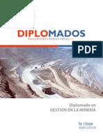 Brochure - Gestion Del Negocio Minero CLASE EJECUTIVA