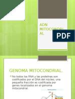 Adn Mitocondrial.