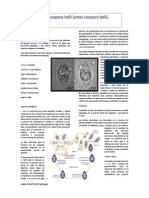 Resumen Cystoisospora Belli