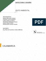 Cajamarca Analisis