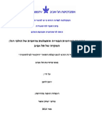 Yoav Lerman's Dissertation