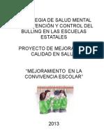PLAN DE MEJORA ESNITSS 2011.doc