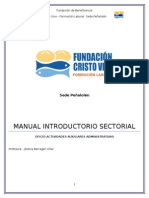 Manual Introductorio Sectorial