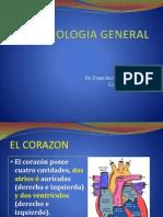 08Angiología Generalidades y Corazon