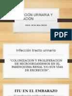 Infección Urinaria y Gestación