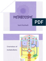 Overview Metabolisme