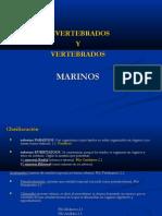 INVERTEBRADOS Y VERTEBRADOS MARINOS.pdf