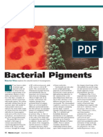 Bacterial Pigments
