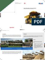 PDF Testimonial Calica