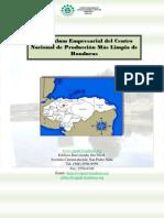 Curriculum-Empresarial-CNPMLH Para Comision Nacional Mas Limpia Tesis