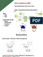 Acido Nucleicos RESUMO