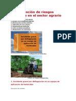 La Prevención de Riesgos Laborales en El Sector Agrario Contailidad