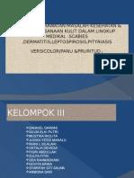 ASKEP_KULIT_DI_DAS[1].ppt