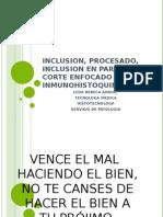 inclusionprocesadoembebidocorterebeca-140730173733-phpapp01