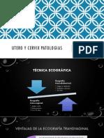 Utero y Cervix Patologias
