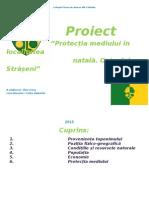 Geo Proiect