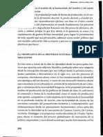 2.3 CANTORAL URIZA_Identidad Cultural y Educacion_pp298-311