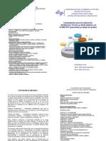 lineamientos_informe