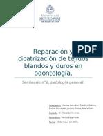 seminario patologia n2.docx
