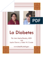 Diabetes Education Manual Spanish