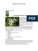 Tintura Dr Javier A Gomez.pdf