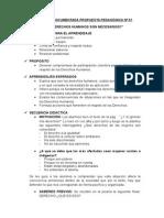 Narración Documetnada Propuesta Pedagógica Nº 01