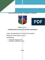 Informe-1-Salpreso